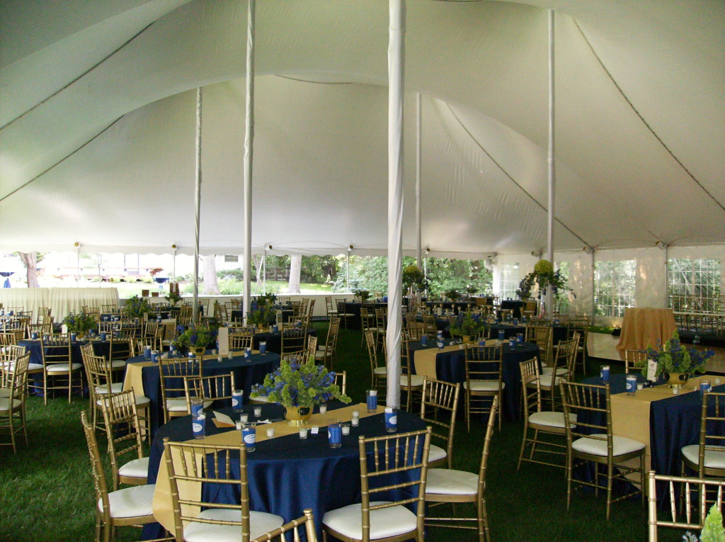 Backyard Quinceanera Ideas: Planning a Memorable Quince in Chicago 5